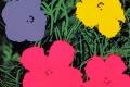 Andy Warhol - Flowers 02