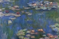 Claude Monet - Water lilies 01