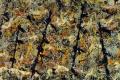 Jackson Pollock - Number 11