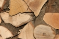 Legno Foto Gratis Download Desktop 06