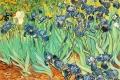 Vincent Van Gogh - Irises 01