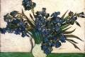 Vincent Van Gogh - Irises 02